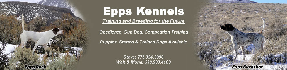 Epps Kennels